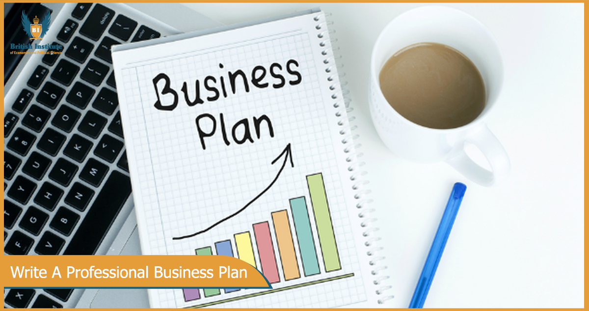 Professional business plan writer cost